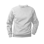 Gray Sweat Shirt