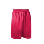 Gym shorts-red mesh